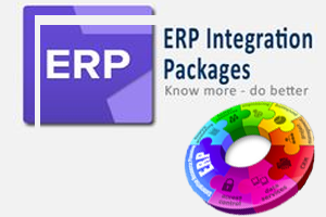customized erp solution, erp services in india, erp solution and services for customized data anlysis